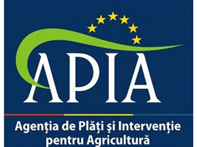 Primar argesean, condamnat definitiv dupa ce a depus acte false la APIA pentru bani europeni