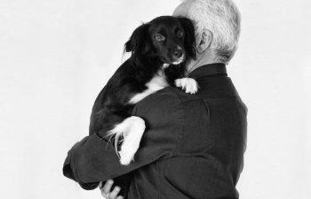 Din avantajele detinerii unui animal de companie: Ce efecte are asupra sanatatii stapanului