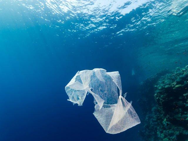Raport ONU: plasticul biodegradabil, o minciuna?