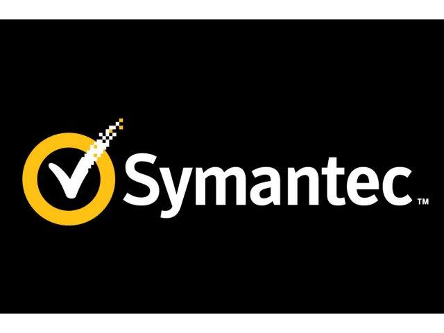 Symantec cumpara cu 4,65 de miliarde de dolari Blue Coat
