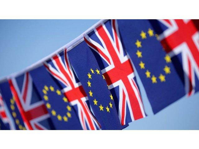 Peste 1.100.000 de cetateni britanici cer un al doilea referendum