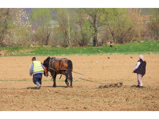 Guvernul Ciolos reduce drastic TVA-ul in agricultura