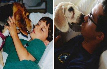Prima si ultima fotografie impreuna: 10 imagini cu animale de companie care te vor emotiona