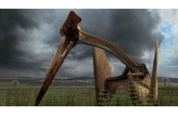 Cel mai mare dinozaur zburator din lume va fi dezvaluit la Muzeul Antipa