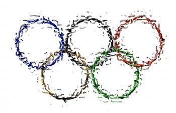 Acuzatii dure la revenirea de la Rio: Eram parca imbracati de la ajutoare!