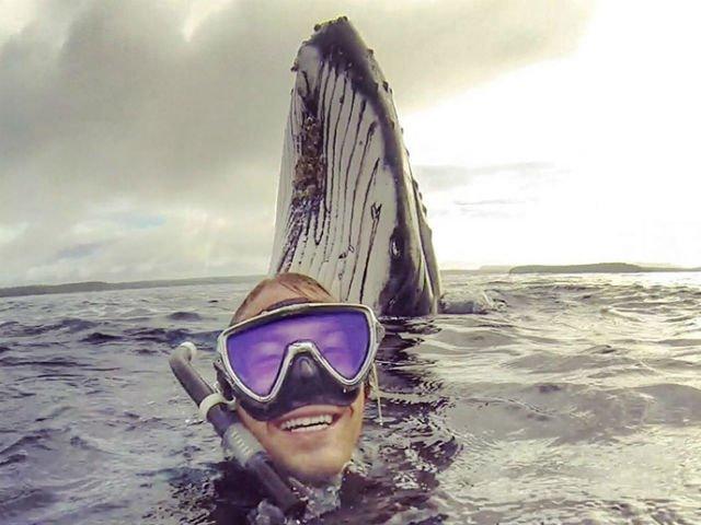 [FOTO] Voia sa isi faca un selfie, dar a surprins un moment unic