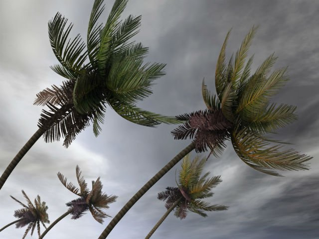 TOP 10 tari predispuse la dezastre naturale