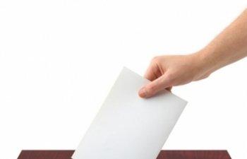 Alegeri parlamentare: 2.000 de copaci vor fi sacrificati pentru buletinele de vot