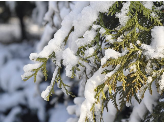 Cod GALBEN de ninsori in 15 judete. Care sunt zonele vizate