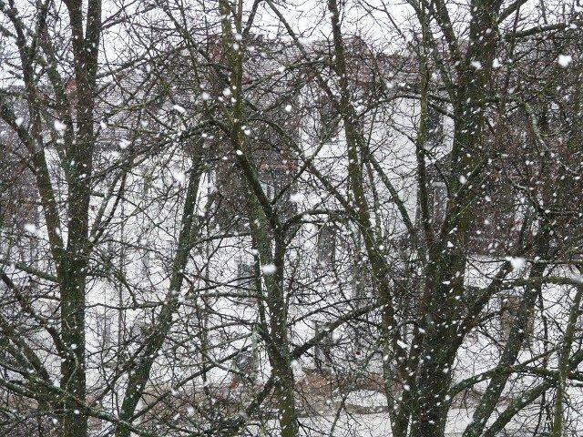 Cod GALBEN de ninsori in mai multe judete