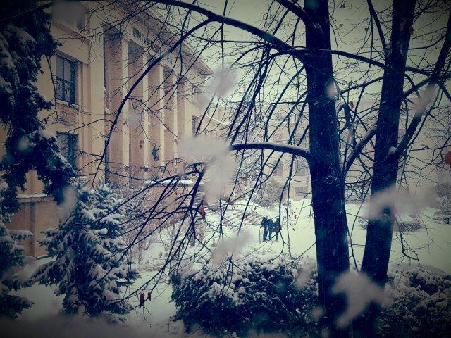 Universitatea din Bucuresti a suspendat cursurile in zilele de 11, 12 si 13 ianuarie