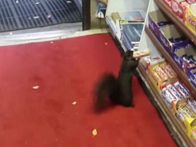 VIDEO] Dupa 5 ani, a reusit sa prinda hotul care ii fura din magazin. Ce surpriza a avut