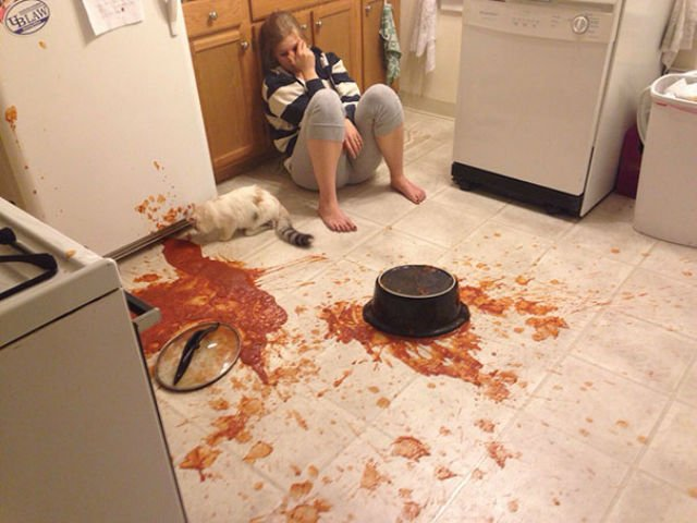 Dezastru in bucatarie! 10 imagini care te vor face sa razi cu lacrimi