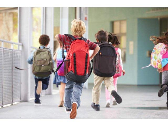"""Cinci copii din Iasi, gasiti asfixiati la scoala, dupa ce ar fi jucat jocul """"Balena Albastra"""""""