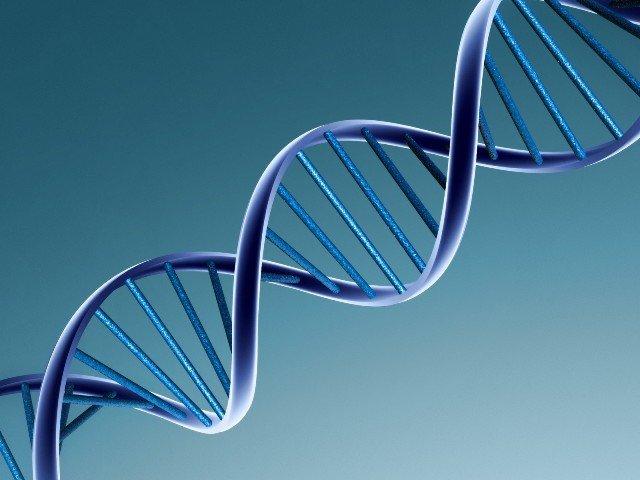 Frica de esec este ascunsa adanc in ADN-ul nostru, spun psihologii