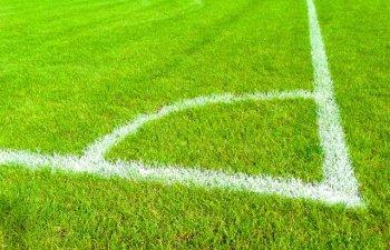 [Foto] Fotbalistii echipei FC Copenhaga au fost atacati cu sobolani morti