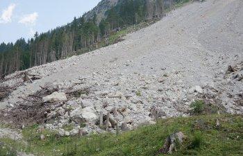 Greenpeace solicita interventia Romsilva intr-un caz de alunecari de teren iminente