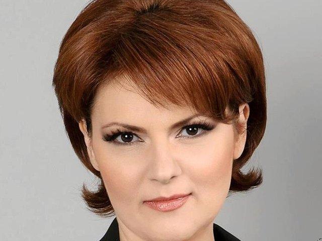 Olguta Vasilescu: Guvernul gandeste o structura de IT-isti care sa deserveasca toate institutiile din Romania