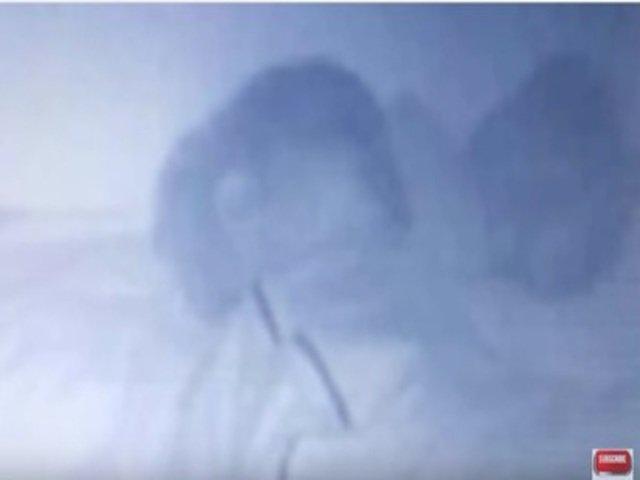 [VIDEO] Infiorator: ce a observat aceasta mama pe camera de monitorizare a bebelusului