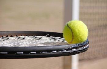 Niculescu si Chan au pierdut finala de dublu la Wimbledon