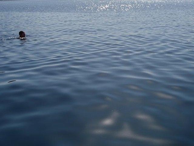 Inotatorul Avram Iancu, care a parcurs Dunarea de la izvoare la varsare, a ajuns la destinatie