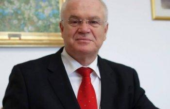 Eugen Nicolicea: Bratul Pavel a disparut, malul s-a mutat pe partea cealalta a insulei, deci nu mai exista in albia minora