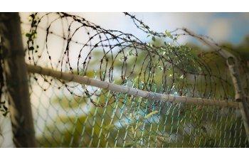 Senatul a adoptat tacit proiectul prin care detinutii scapa de inchisoare dupa ce ispasesc jumatate din pedeapsa