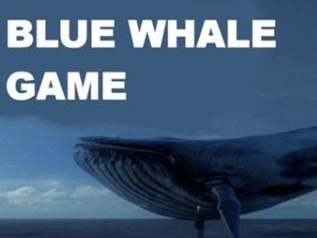 DIICOT a clasat dosarul `Balena Albastra`. Elevii care s-au sinucis nu erau implicati in acest joc
