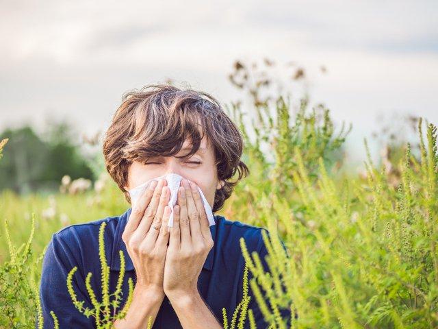 Administrarea fara reteta a medicamentelor contra rinitei alergice sezoniere ameninta fertilitatea masculina