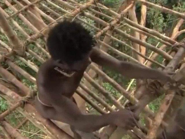 BBC recunoaste ca a trucat o parte a unui documentar despre triburile din Papua Noua Guinee