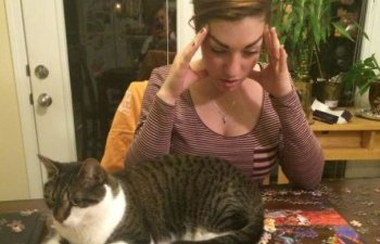 10+ imagini care demonstreaza ca pisicile nu sunt doar imprevizibile, ci si extrem de egoiste