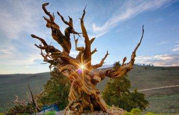 9 imagini impresionante care demonstreaza ca natura nu are nevoie de retusuri pentru a fi perfecta