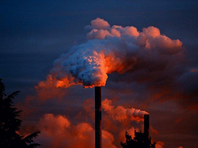 OMS - 7 milioane de oameni mor in fiecare an din cauza expunerii la aer poluat