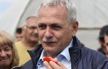 Liviu Dragnea sustine ca Iohannis blocheaza referendumul pentru redefinirea familiei