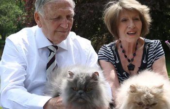 Un barbat a divortat de sotia sa pentru ca avea 7 pisici, insa s-a recasatorit cu ea dupa 30 de ani, cand aceasta are 40 de feline