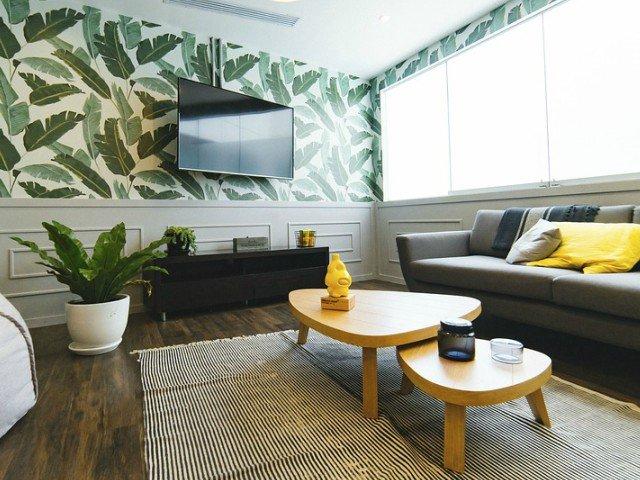 9 motive pentru care trebuie sa ai plante de interior in casa