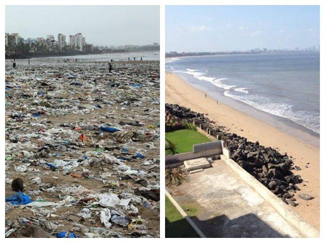Testoasele marine au revenit pentru prima oara in 20 de ani pe o plaja din India, dupa ce a fost curatata