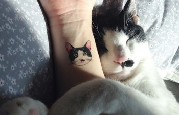 20+ tatuaje minimaliste cu pisici pe care orice iubitor de animale le va adora