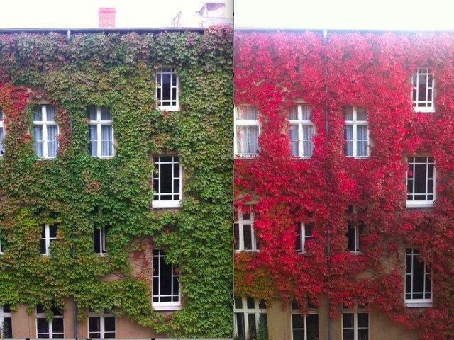 Ieri vs azi: 10+ imagini comparative care iti vor schimba total perpectiva asupra trecerii timpului