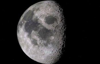 Planta incoltita in cadrul experimentului chinez pe fata ascunsa a Lunii a murit odata cu inceperea noptii selenare/ VIDEO