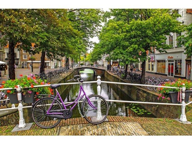 Olanda va interzice folosirea telefonului mobil in timpul mersului pe bicicleta