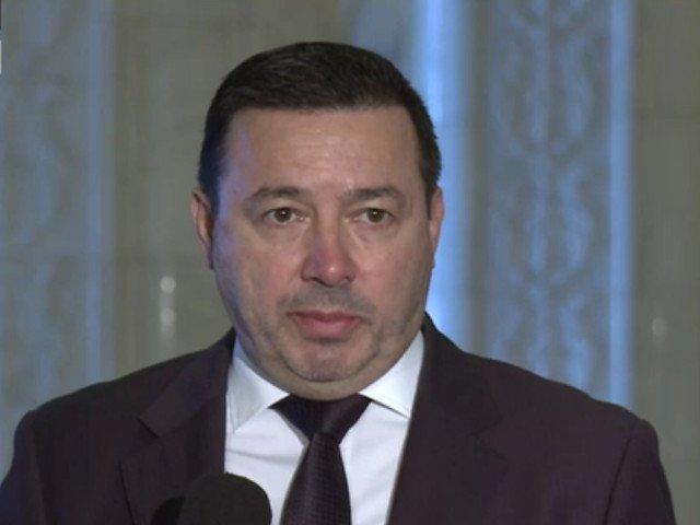 """Radulescu: Peste 500.000 de semnaturi pentru initiativa """"Fara penali"""" au fost descoperite ca fiind false"""