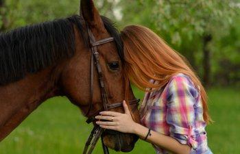 Frica de fluturi sau de cai: 9 fobii de animale mai putin cunoscute