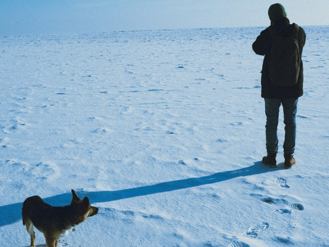 Un barbat si cainele sau, care au ramas blocati timp de 5 zile in zapada, au supravietuit doar cu sos pentru taco