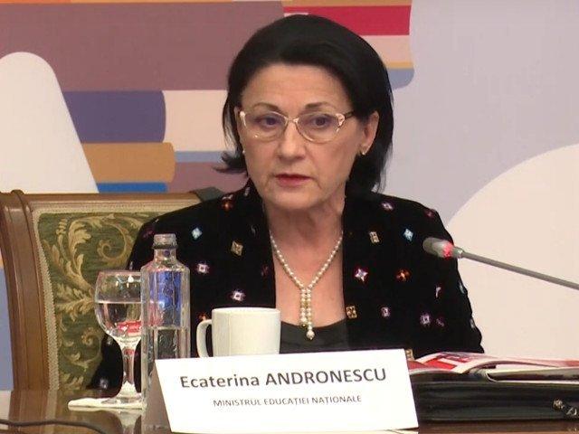 Profesor de romana, dupa eroarea de la simulare: Ministrul Andronescu sa isi dea demisia