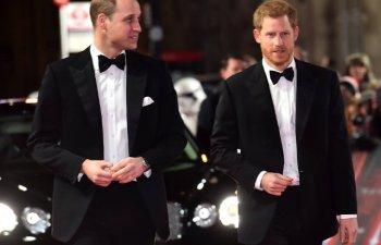 Printii William si Harry anunta separarea familiilor lor la nivel de reprezentanti oficiali