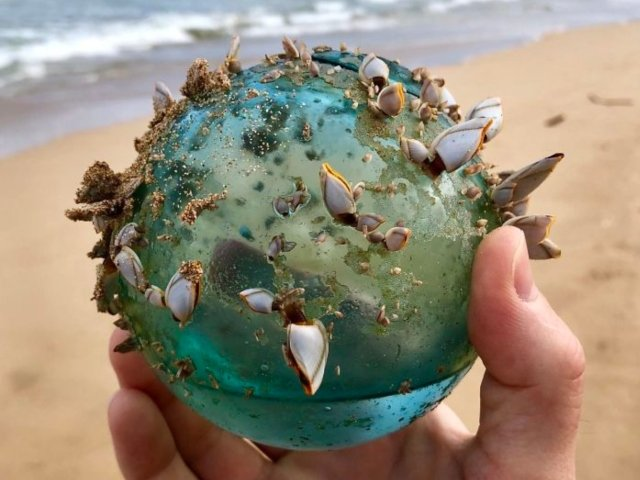 """Comori"" ascunse in nisip: 10+ produse impresionante gasite intamplator pe plaja"