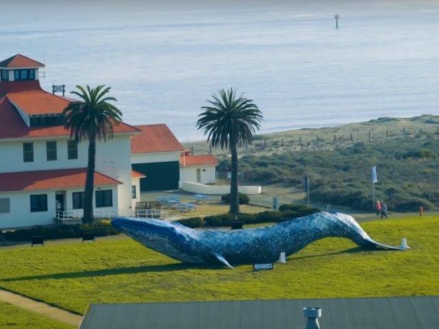 Sculptura unei balene facuta din plastic a intrat in Cartea Recordurilor