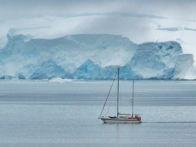 "10+ curiozitati fascinante despre Antarctica, numita si ""regatul ghetarilor"""