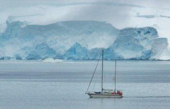 10+ curiozitati fascinante despre Antarctica, numita si